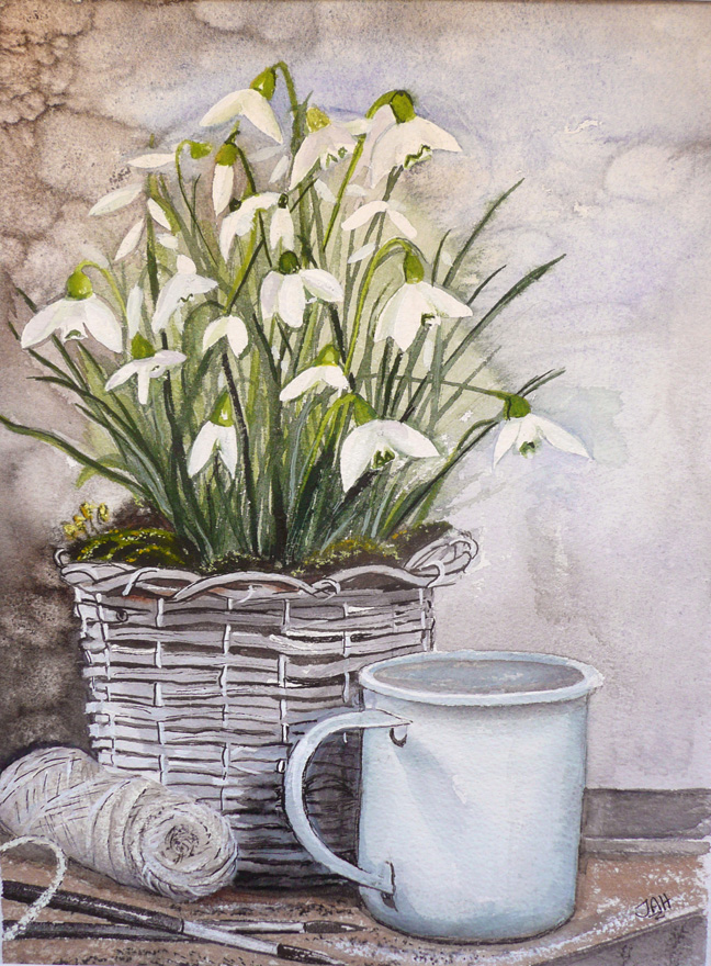 I painted these Snowdrops. SOLD Giclee print and cards available