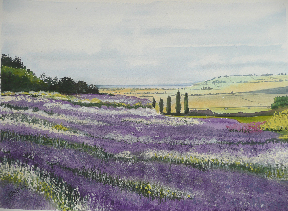 Lavender Fields Province